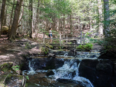Chasing Waterfalls in Cottage Country - A Tour by Bracebridge