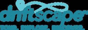 DS Logo Feb 2019.png
