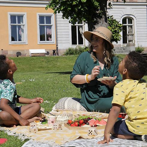 Picknick med familjen.jpg