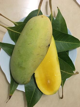 Maha Chinnok Mango.JPG