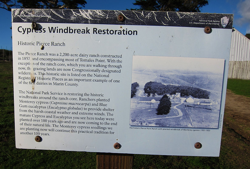 CYPRESS RESTORATION SIGN.jpg