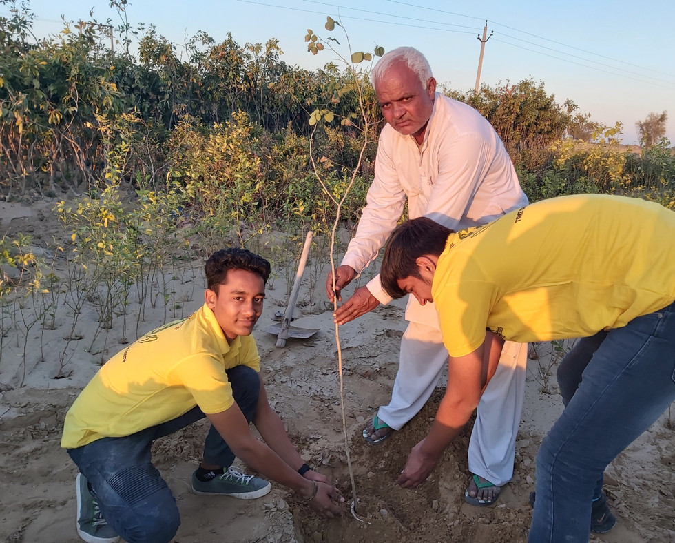 Plantation With Netrapal Singh