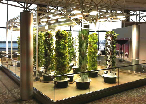 Tower Gardens at Chicago O'Hare Airport