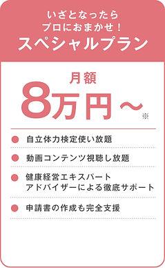 0413スペシャルプラン.jpg