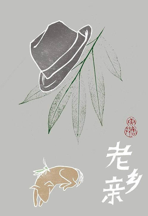 老鄉親(精)