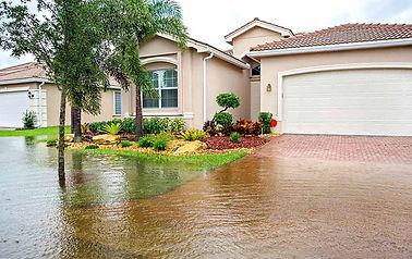 Flood_large.jpg
