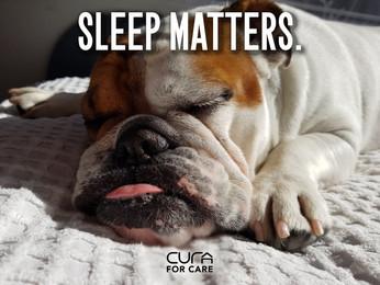 How Sleep Helps Prevent Memory Loss
