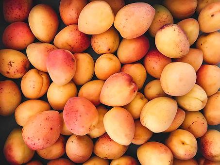 Apricots_edited.jpg