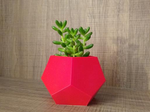 Como aguar as plantas em vasos sem furo?