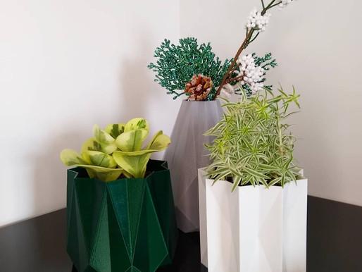 Opções de Presentes para os Amantes de Plantas