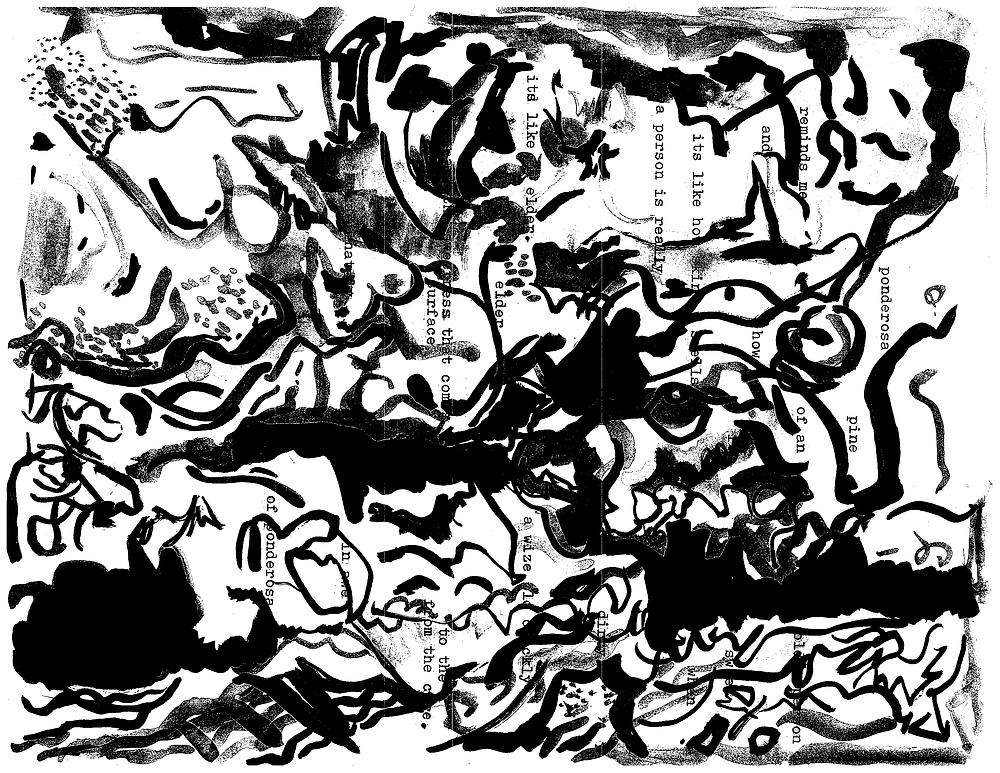ink painting of ponderosa pine bark