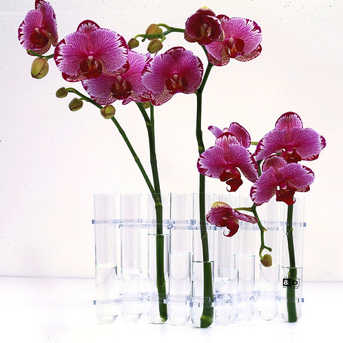 Flex Vase- 10 Test Tubes