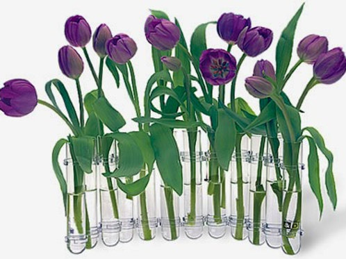 Flex Vase- 12 Test Tubes