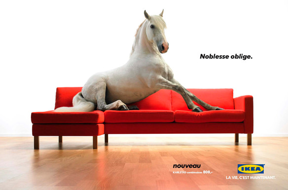 Just what you always wanted, a horse on your couch.