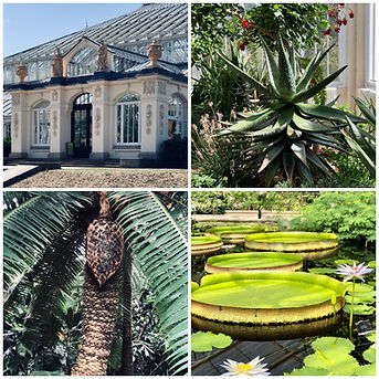 CITY GUIDE_londen_kew gardens.JPG