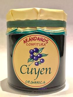 Dulce de Arandano