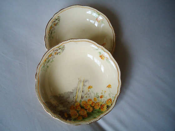 2 Vintage Minton fruit/cereal bowls yellow morn