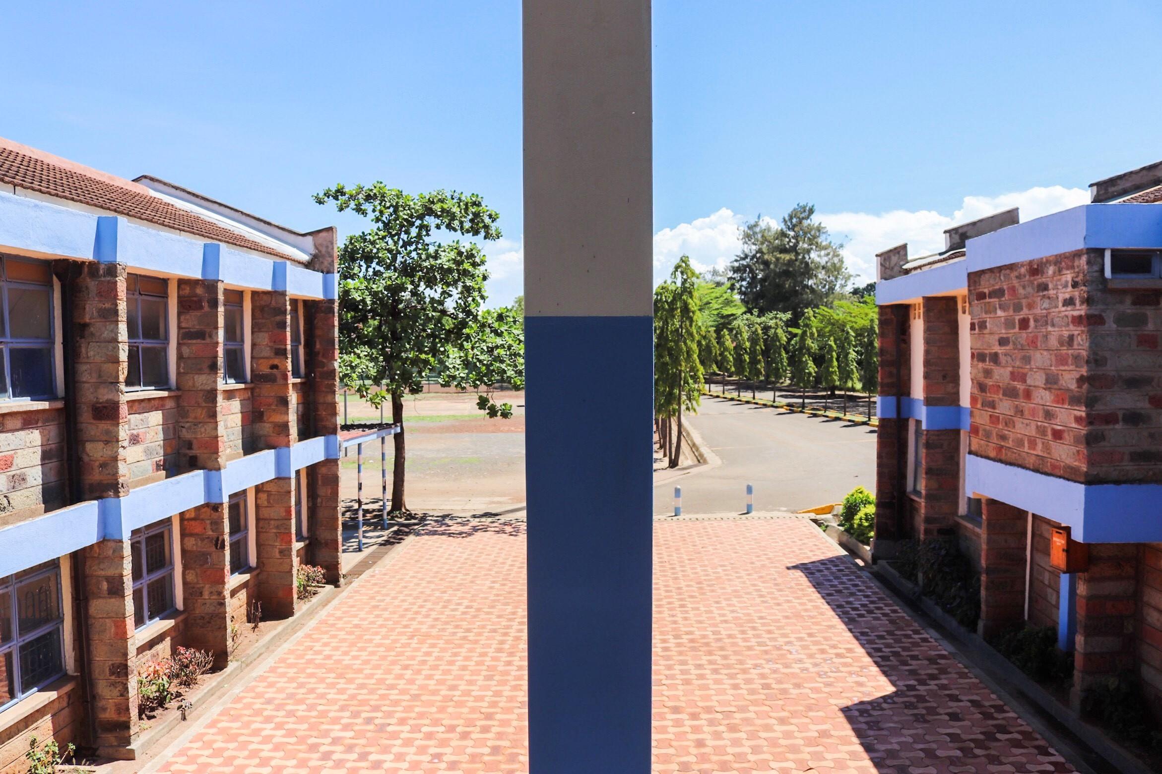 School View