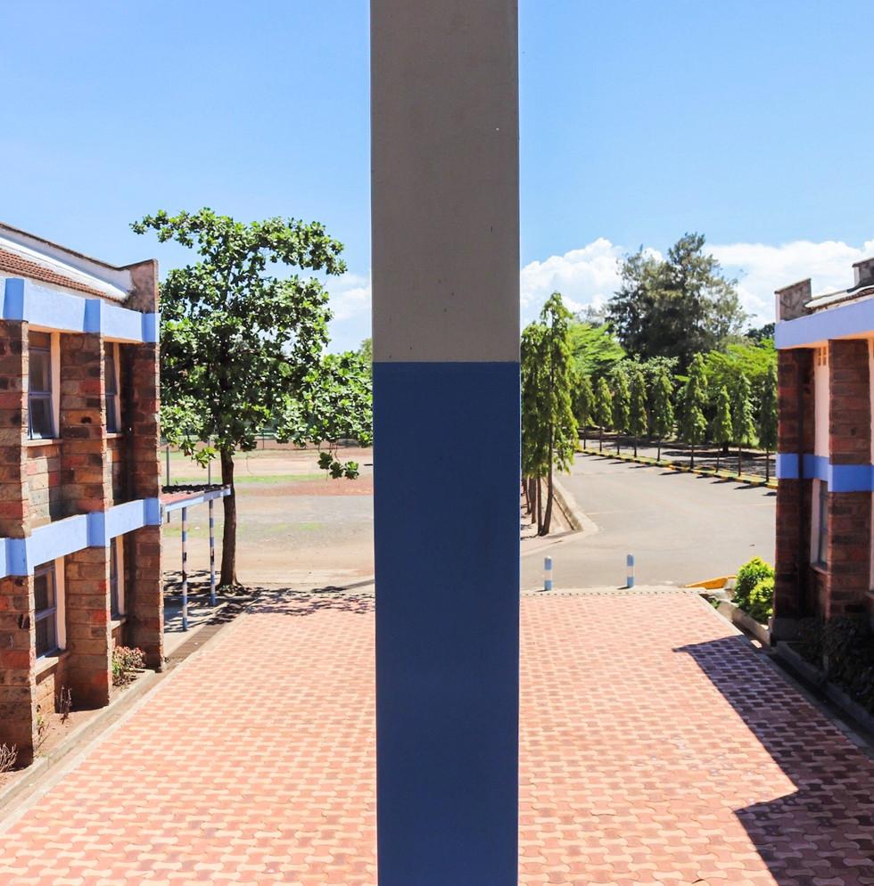 School View.jpg