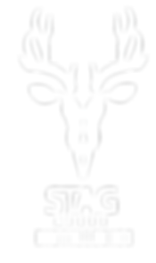 Stag&SonsLogoWit.png