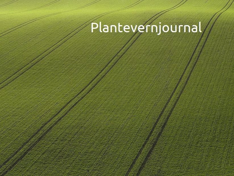 Plantejournal_edited