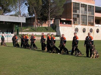 Nati e Allevati in Italia 2003