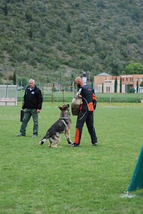 Campionato Regionale Pisa 2017