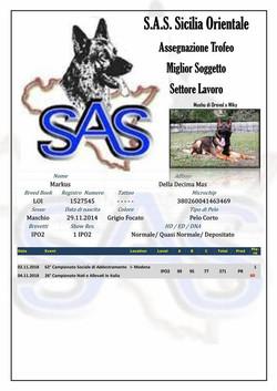SAS sicilia orientale