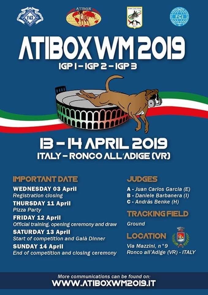 campionato mondiale Boxer Work Dog