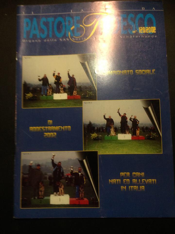 copertina rivista SAS