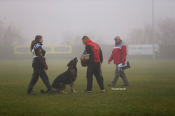 Primo Trofeo Team Working Dog