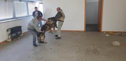Polizia Locale RIMINI