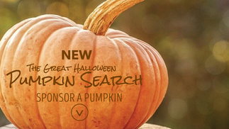 The Great Pumpkin Search