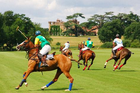 knepp castle polo