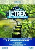 Box Hill Trek