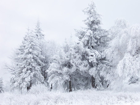 Winter is Coming! Is a price correction coming in the dental market?
