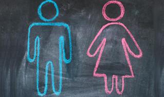 Cosa insegnerebbe il 'Gender' in Italia?
