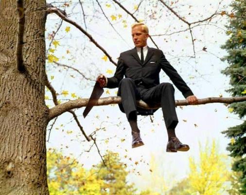 Hombre en un árbol, serruchando una rama