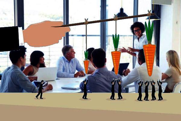 grupo de trabajo, exposición, zanahorias, motivación