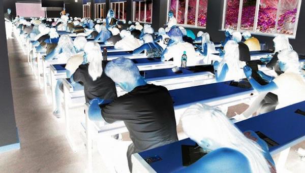 salón de estudio, estudiantes, enseñanza