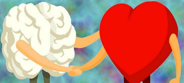 Corazón y cerebro dando un apret+on de manos