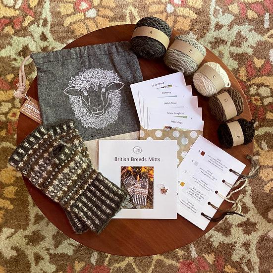 Armchair Travel Knit Kit 1: British Breeds Mitts Kit