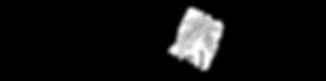 Rowan Sprig Logo (H) 400x100 Transparent