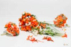 flowers dng_52.jpg