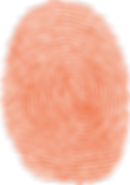 Asesorias Informaticas Office 365, Firewall, Respaldo, virtualizacion telefonia IP