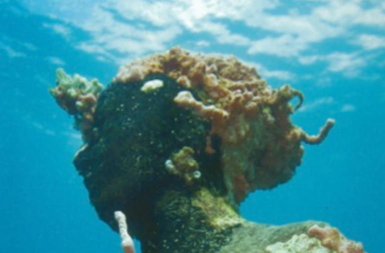 Sculptures under the sea concept PG 5.pn