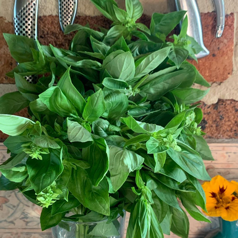 A visit to the market for pomegranate and fresh vegetables, my basil in garden is almost dead but this bunch revives me......Pasta with Mint and Breadcrumb Pesto 🌿 tomorrow Page 22, Bread Is Gold: Extraordinary Meals with Ordinary Ingredients 💚 Keep on going.....Food for thought, yes please.  (awriterinitaly)