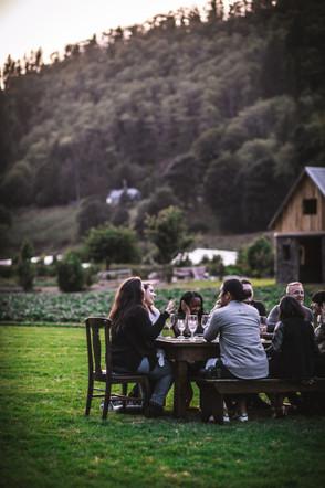 Secret Supper Clover by Eva Kosmas Flore