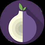 Orbot-logo.svg.png
