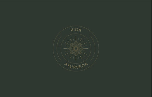 VIDA_LOGO-02.jpg